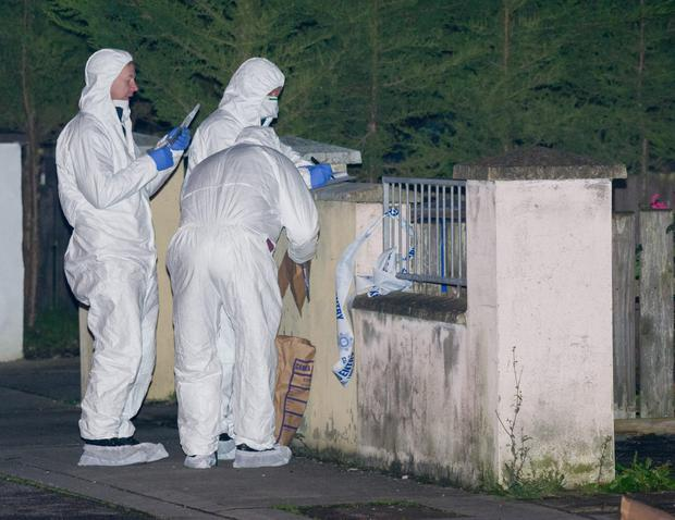 Garda forensic officers at the scene of the attack