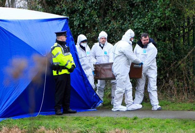 Gardai at the scene where remains were found in Ardclough. Photo: Collins Dublin, Gareth Chaney