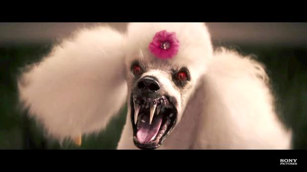 Poodle from Goosebumps - Nicky Byrne brought his daughter Gia (2) to see the movie and she was most scared by this scene
