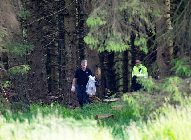 Gardai investigate an icident at the Hell Fire Club where three men were stabbed in broad daylight.