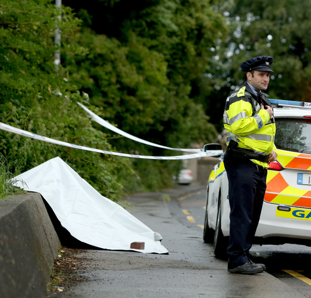 Gardai at the scene of the brutal attack