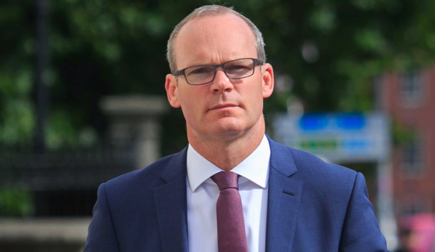 Minister Simon Coveney Picture: Collins