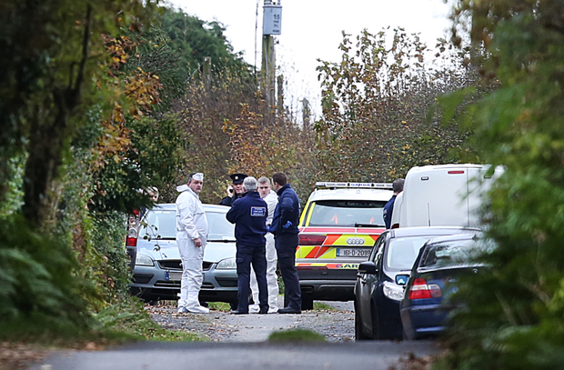 Memers of the Garda Technical Bureau at the sealed off road in Knockadoon outside Tom and Kitty Fitzgerald's home where their bodies were discovered.