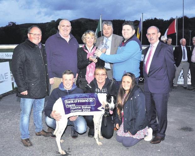 Top-performing greyhound Clares Rocket after another win