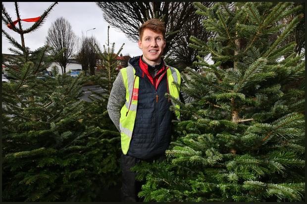 Philip Bannon with his selection of Christmas Trees for sale at the junction of Hamstead Avenue and Ballymun Road.