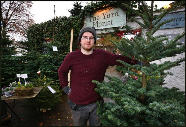Harry Suttle from The Yard Florist on Vernon Avenue in Clontarf with their selection of Christmas Trees.