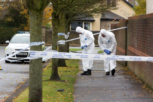 Gardai search the scene of the attack in Maynooth for clues
