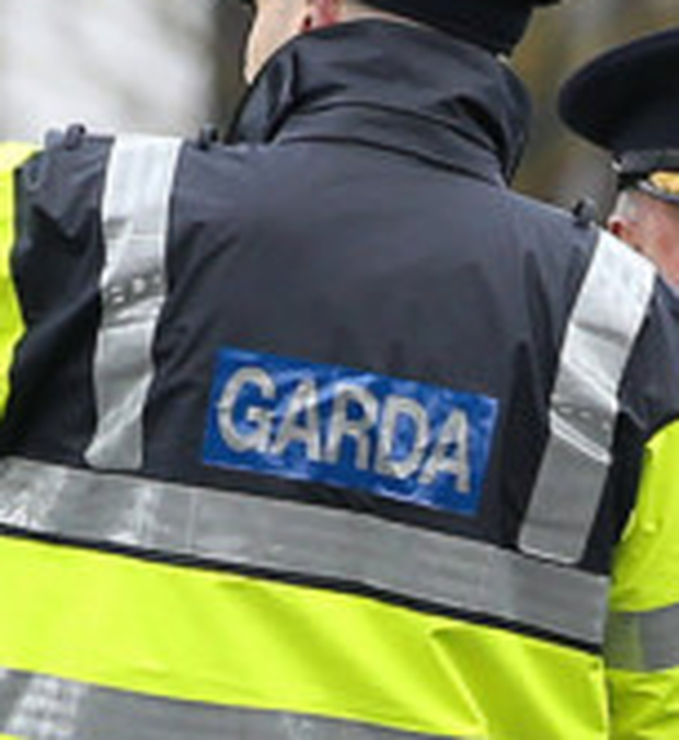 Gardai were quickly alerted