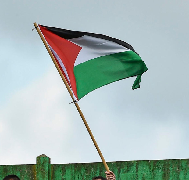 The Palestinian flag