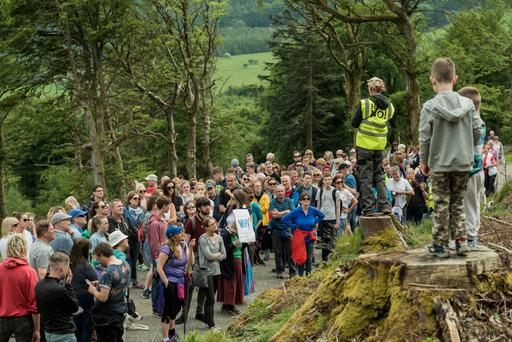 'Take a Stand' to save Hellfrie and Massy's Woods.