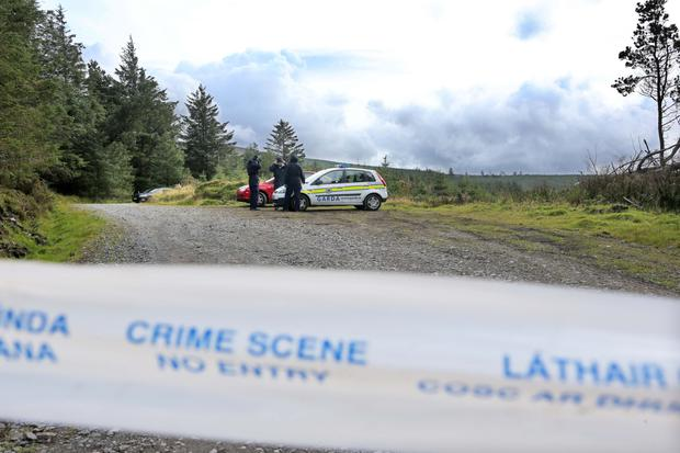 Garda set up a crime scene in Black Hill Forest where Michael McCoy was found dead. Photo: Collins