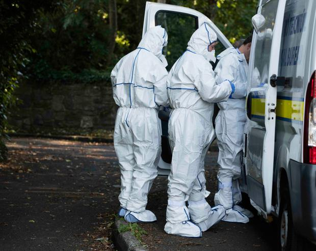 Garda Forensic Team (Garda Technical Bureau) arrive at the crime scene in Coolmine Woods