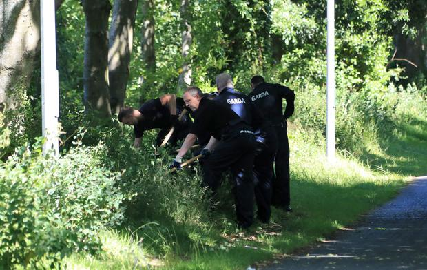 Gardai search the scene this morning where the body of a woman was discovered in undergrowth at Coolmine Wood