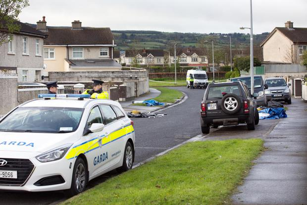 Gardai at the scene of the killing of Stephen Lynch at Brookview