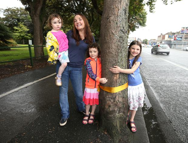 Edel Leahy, from Marino, with her daughters Jane, 3, Aoife, 8, and Karen, 6, beside a tree next to fairview park where the council want to remove for a new cycle path. Photo: Damien Eagers
