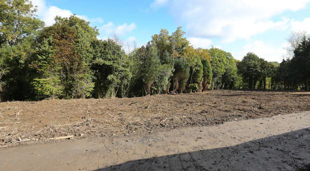 The search site in Chapelizod