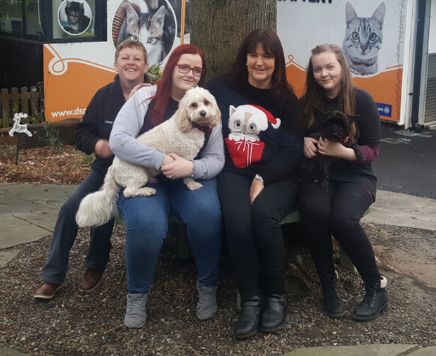 DSPCA staff Linda Lee, Hollie Swift, Orla Solan and Rachel Dunn with dogs Bailey and Muffy