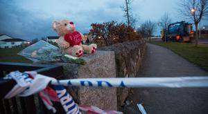 Flowers left at the scene where Sean Doyle died in a sulky accident