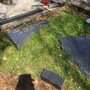 Damage done to graves at Ardla cemetery in Skerries