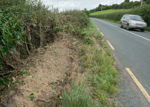 Ditch at scene of the fatal accident in Co Westmeath