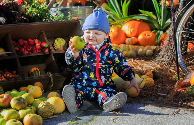 JD Heffernan (one), from Clonsilla enjoying the Autumnal weather at the Haloween Harvest Display in The Botanic Gardens Dublin