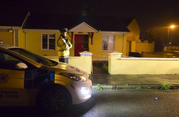 John Lowe was found unconscious at this bungalow on the Coolfin Meadows estate in Portlaw