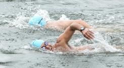 Swimmers take part in 2016