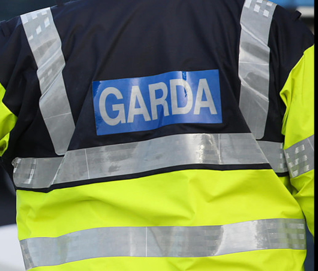 Garda was quizzed over ammo