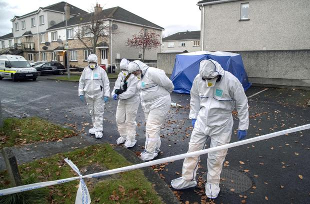 Gardai investigate the scene on Mount Andrew Court, Lucan this morning, where the body of a man was discovered in a burning car last night