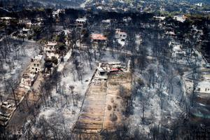 An aerial view shows burnt houses and trees in Mati