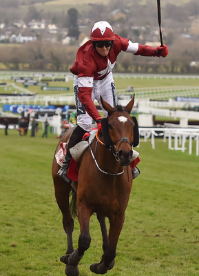 Tiger Roll triumphs on day two of Cheltenham last year