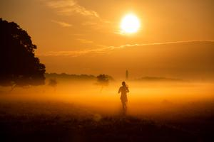 A lone runner jogs through the mist at sunrise in the Phoenix Park. Photo: Naoise Culhane