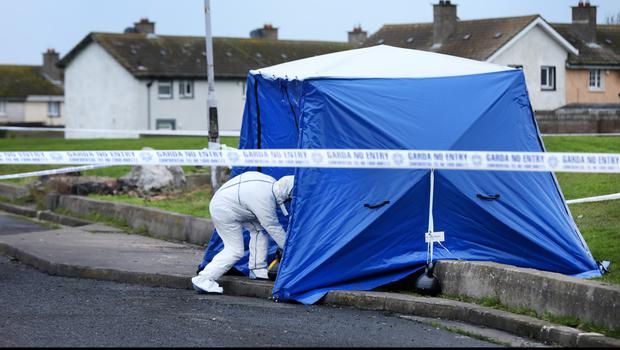 Gardai at the scene near Moatview Drive in Coolock where Keane's body parts were found