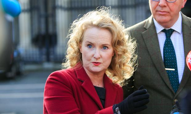 Fine Gael councillor Mary Fitzpatrick wants system shake-up