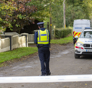 Gardai at the scene of the shooting near Ardee in Co Louth
