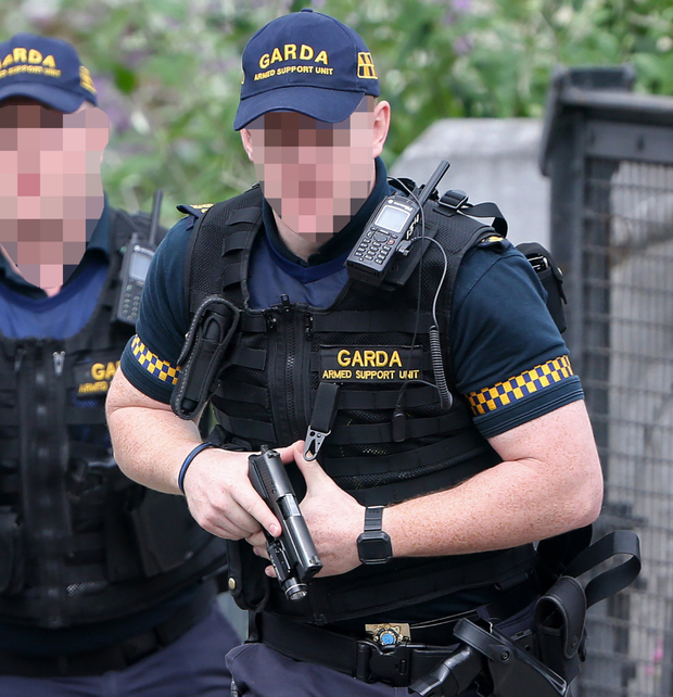 Gardai yesterday released details of their successful operation against Little's associates