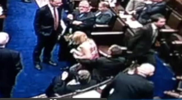 'Lap gate' in the Dail