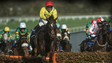 RIGHT CREDENTIALS: Supasundae's form is as good as anything in the Champion Hurdle today