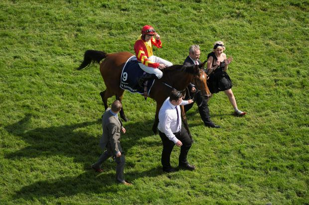Qualify will bid to replicate her Epsom Oaks heroics in the Irish Derby