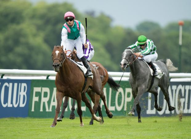 New Bay winning the Prix du Jockey Club at Chantilly