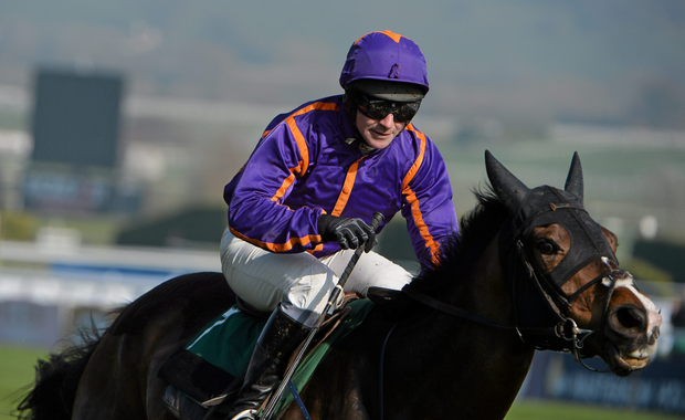 Arctic Fire, with David Casey up, at last year's Cheltenham