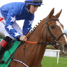 HARD TO BEAT: Princess Yaiza can handle the ground at Ballybrit today