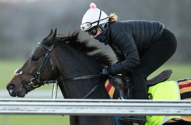EXCITING: Too Darn Hot is still not confirmed for the 2,000 Guineas
