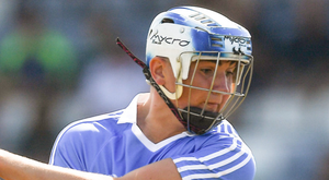 Luke Swan was influential against Offaly