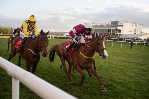Sixshooter (r) represents a trainer in good form