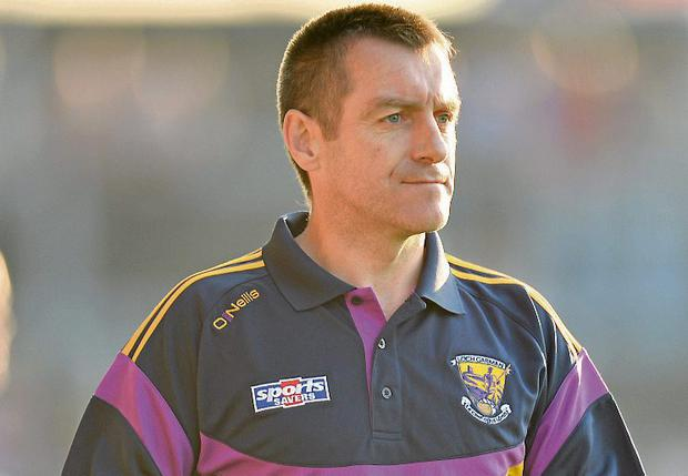 Wexford manager Liam Dunne. Picture: Sportsfile