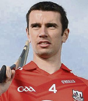 Cork's Brian Murphy. Picture: Stephen McCarthy/SPORTSFILE.