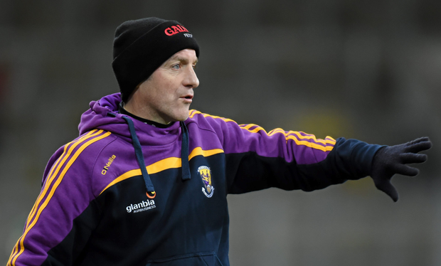 Wexford manager Liam Dunne: SPORTSFILE