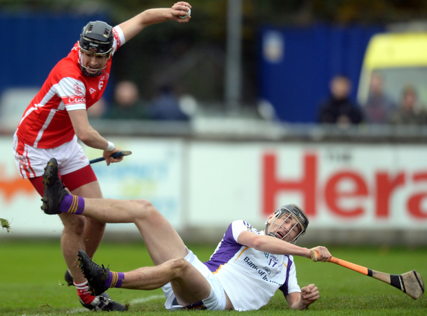 Cuala's Seán Moran, pictured in action against Kilmacud's Ronan Hayes in the Dublin SHC final, has been in impressive form for the Dalkey club