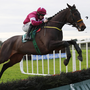 Tipped: Sometimes A Fox, ridden by Jack Kennedy, in action at Fairyhouse last December